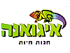 coupon picture